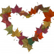 Autumn leaves isolated empty heart — Stock Photo #6755370
