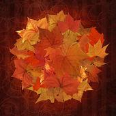 Herbstszenen kreis hintergrund — Stockfoto