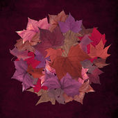 Autumn leaf circle grunge background — Stock Photo