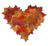 Autumn leaves isolated heart — Stock Photo