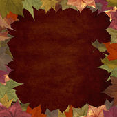 Autumn leaves grunge frame background — Stock Photo