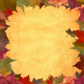 Foglie d'autunno sfondo cornice grunge — Foto Stock
