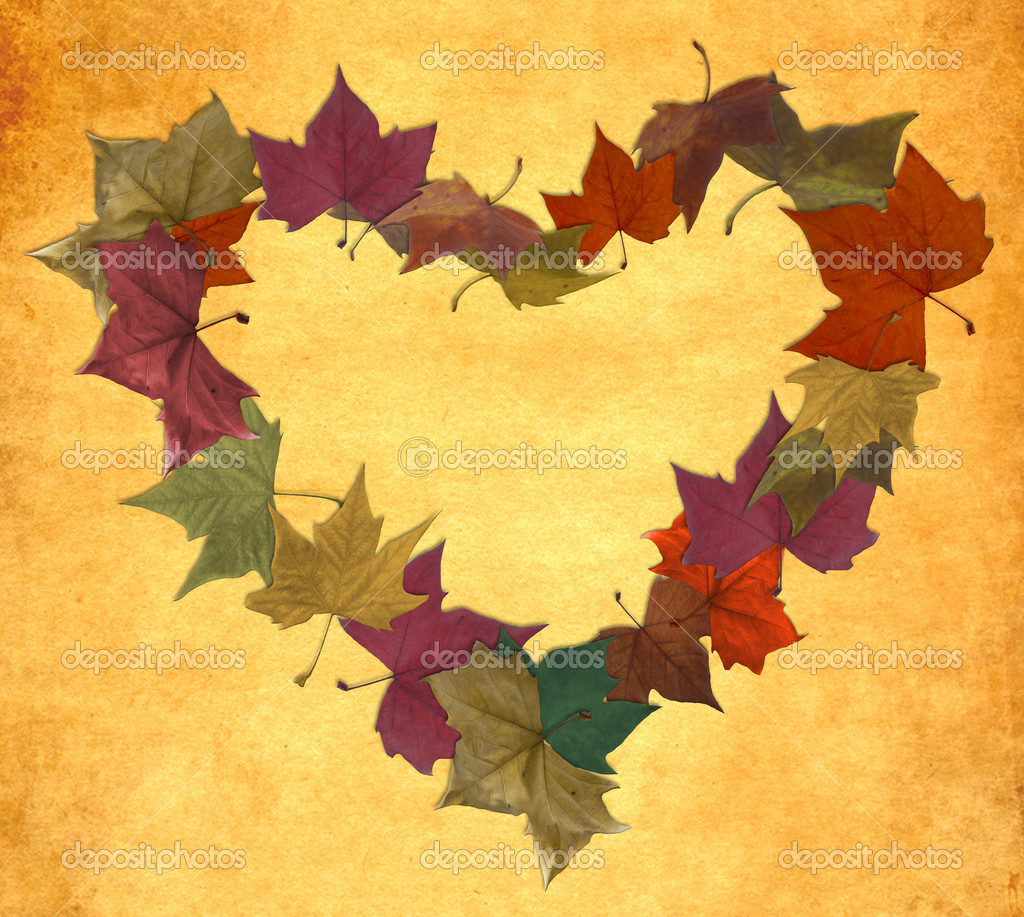 Multicolored fall leaf lot in empty heart shape over vintage background  Stock Photo #6839346