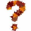 Question mark multicolored fall leaf composition isolated — Stock Photo