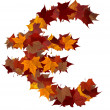 Stock Photo: Euro symbol multicolored fall leaf composition isolated