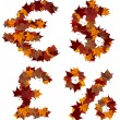 Cash symbols multicolored fall leaf composition isolated — Stock Photo