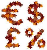 Cash symbolen veelkleurige vallen blad samenstelling geïsoleerd — Stockfoto