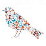 Social media icons set in bird composition — Stock Vector