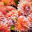 Bouquet of dahlias — Stock Photo #7242247
