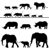 African animals, vector silhouettes — 图库矢量图片