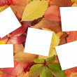 Autumn leaves and sheets of paper - Lizenzfreies Foto
