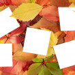 Autumn leaves and sheets of paper - Foto Stock
