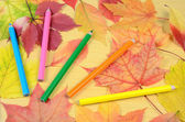 Autumn leaves and pencils — Stock Photo