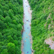 Stock Photo: Rafting on river Tarin Montenegro