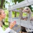 Girl communicating to an ostrich — Stock Photo