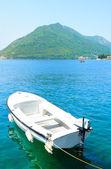 Witte zeilboot — Stockfoto