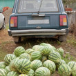 Stock Photo: Heap of watermelons and car