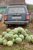 Heap of watermelons and the car — Stock Photo