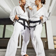 Martial arts masters — Stock Photo