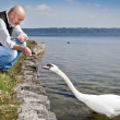 Old man and swan — Stock Photo #6836856