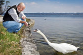 Old man and swan — Stock Photo