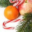 Christmas fruit — Foto Stock