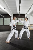 Martial arts meester — Stockfoto