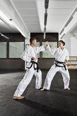 Martial arts master — Stock Photo