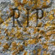 Stock Photo: Stone texture with RIP