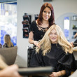 Stock Photo: Hair Salon situation