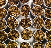 Cigarettes full frame — Stock Photo