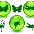 Bio or eco spheres — Stock Vector