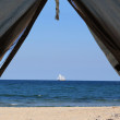 View from the tent - Stockfoto