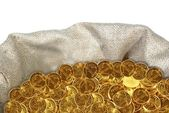 Coin in bag — Stock Photo