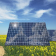 Sunny batteries on meadow background — Stock Photo