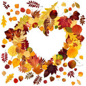 Form the heart of autumn leaves — Stock Photo