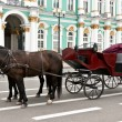 Carriage with horses in the background of the Hermitage - Stock Photo