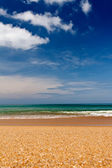 Sandy beach — Foto Stock