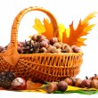 Stock Photo: Autumn wicker basket