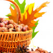 Autumn wicker basket — Stock Photo #7132825