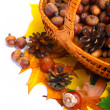 Autumn wicker basket — Stock Photo