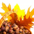 Autumn wicker basket — Stock Photo #7139758