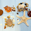 Stock Photo: Shells and star