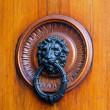 Lion knocker — Stock Photo #7563032