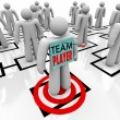 Team Player Targeted in Organizational Org Chart Teamwork - Lizenzfreies Foto