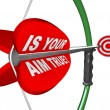Is Your Aim True? Question on Bow and Arrow Target - Stock Photo