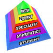 Pyramid of Expert Mastery Skills Rise from Student to Master — Stock Photo