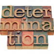 Determination word in letterpress type — Stock Photo