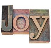 Joy slovo v knihtisk typu — Stock fotografie