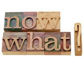 Agora que pergunta — Foto Stock